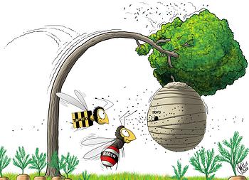 Die Biene Trafo